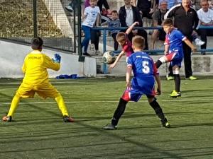 Hajduk dica